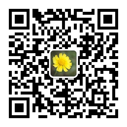 李老师微信二维码.jpg