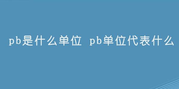 pb是什么单位 pb单位代表什么.jpg